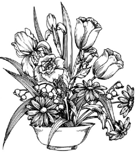 Flori De Primavara Planse De Colorat Planse De Colorat